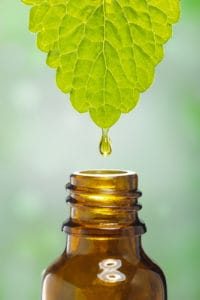 essential oil leaf